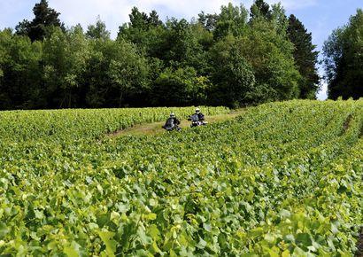 Motorradtrip : Zwischen Marne und Weinbergen